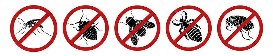 Thuốc diệt côn trùng diệt muỗi hiệu quả