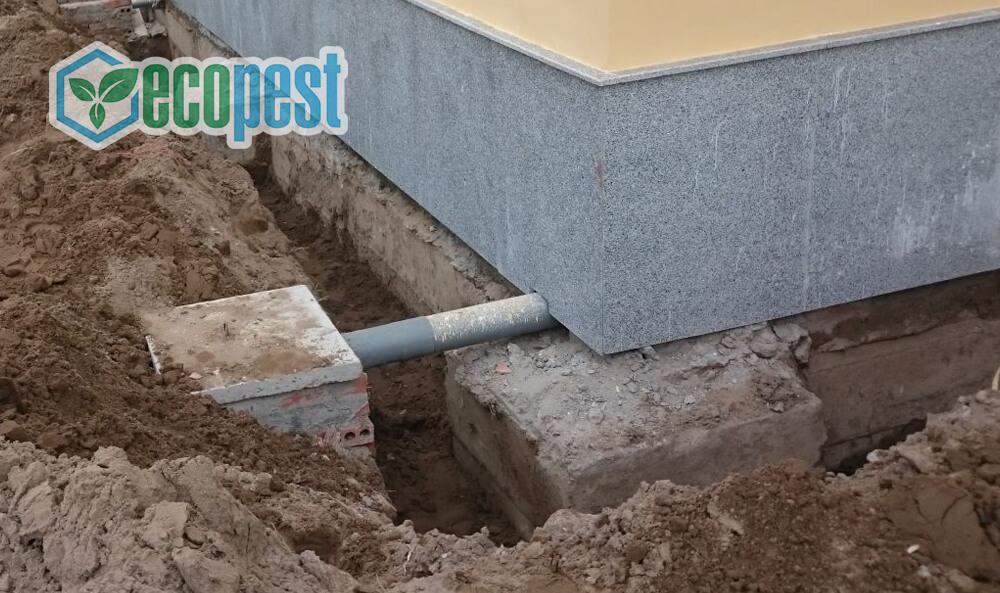 Đào hòa chống mối công trình xây dựng